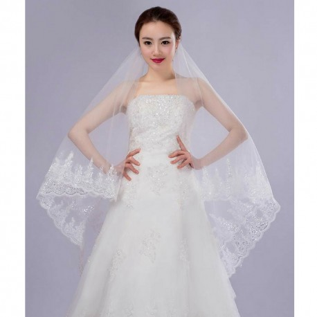 Korean Style Long-Tailed Lace Embroidery Bridal Veil