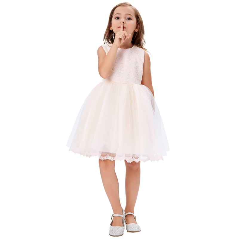 embroidered sleeveless lace pale pink flowergirl dress