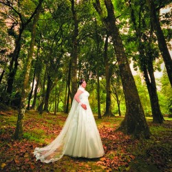 Pre wedding photography Package